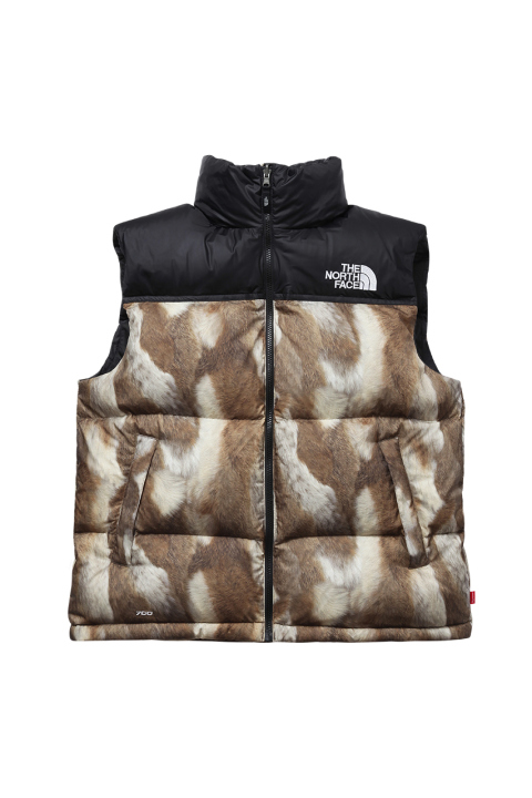supreme-x-the-north-face-2013-fallwinter-collection-6